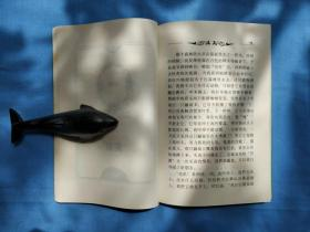 纽伯瑞儿童文学金牌奖 (8本)/银牌奖(8本)共16本合售
