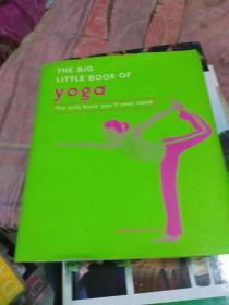 英文原版精装 The big little book of YOGA