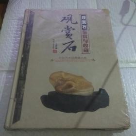 中国艺术品典藏大系(第1辑):观赏石鉴赏与收藏