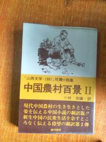 中国农村百景Ⅱ(日文原版)