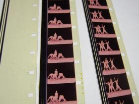 人体运动系统 全新 16毫米科教电影胶片 1卷 进口片基 甲等 彩色