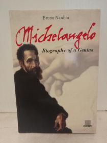 米开朗基罗传 Michaelangelo A Biography by Bruno Nardini (绘画)英文原版书
