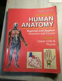 human Anatomy volume 1  外文