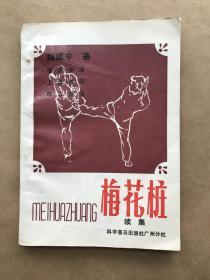 梅花桩(续集), 技击步法、上盘练习、棍法剑法,韩建中著,科学普及出版社广州分社1989年1版1印