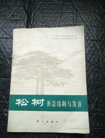 松树形态结构与发育