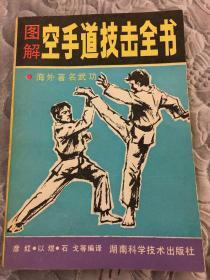 图解空手道技击全书
