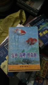 金鱼锦鱼热带鱼