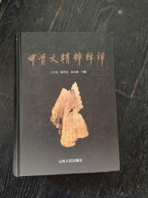 甲骨文精粹释译