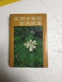 实用中草药彩色图集—第二册