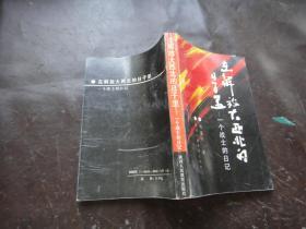 在解放大西北的日子里:一个战士的日记