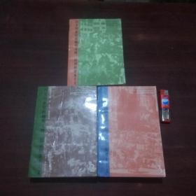 15至18世纪的物质文明经济和资本主义(第一二三卷3册全)(1996年)