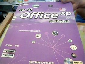 中文office xp高手攻略