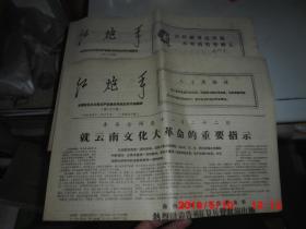 云南文革小报 :红炮手 (22 .24期合售 )4开8版