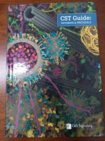 CST Guide:PATHWAYS&PROTOCOLS(first edition)