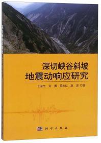 深切峡谷斜坡地震动响应研究