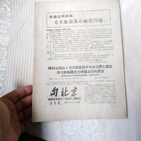 文革期刊    第8期