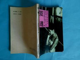 妓魂--韩国十九名慰安妇的亲身经历