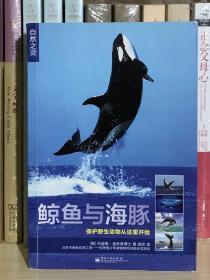 鲸鱼与海豚