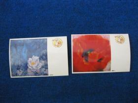 中国邮政明信片两张:白荷花、虞美人(空白)