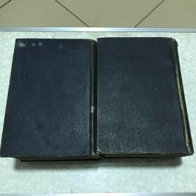 中国医学大辞典上下册精装 中华民国十年初版