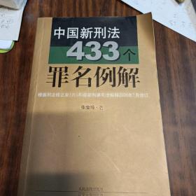 中国新刑法433个罪名例解