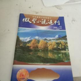 微型小说选刊2008-22