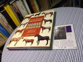 英文原版 the illustrated encyclopedia of  horse  breeds  图解的马品种百科全书【存于溪木素年书店】