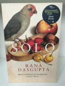 Solo by Rana Dasgupta (印度文学)英文原版书