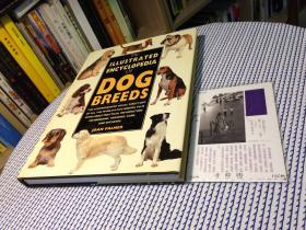 英文原版 the illustrated encyclopedia of  dog  breeds  图解狗品种百科全书【存于溪木素年书店】