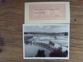 1963年,湖北省浠水县望城公社,社员们担着稻谷回家