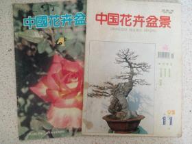 中国花卉盆景2本合售 3架中