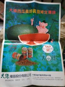 早期台湾商品宣传广告 大绿西瓜