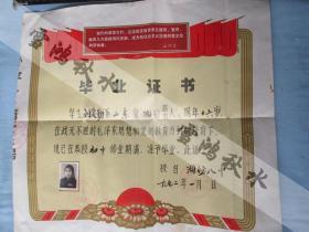 潍坊八中毕业证书一张——1972年