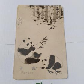 1973年年历片:吴作人画的熊猫