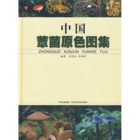 中国蕈菌原色图集