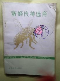 蜜蜂良种选育