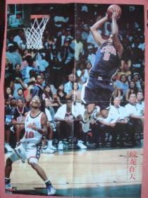 一张小4开的篮球图《蛟龙在天—文斯.卡特》