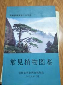 《安徽省常见植物图鉴》 铜版纸彩印!