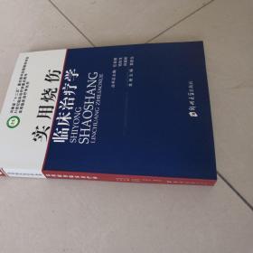 实用临床治疗学丛书:实用烧伤临床治疗学