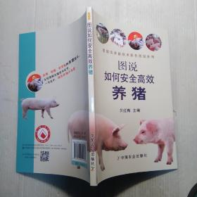 图说如何安全高效养猪
