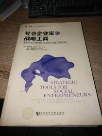 社会企业家的战略工具