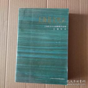 上海县文化志(正版现货 本店可提供发票)