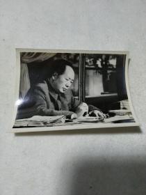 毛主席像照片12张合售(品好背面印有开封)