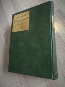 现代维吾尔文学语言正字正音词典