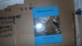 青海省岩石分类命名  16开