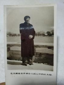 毛主席照片 毛主席是世界革命人民心中的红太阳