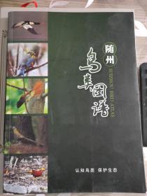 随州鸟类图谱