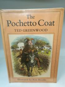 插图版 The Pochetto Coat by Ted Greenwood(童书)英文原版书