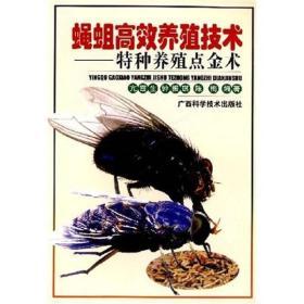 蝇蛆高效养殖技术