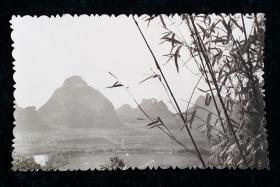 翠竹山水风景老照片相片一枚